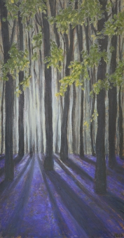 Bluebells - AVAILABLE